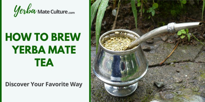 How to brew yerba mate tea