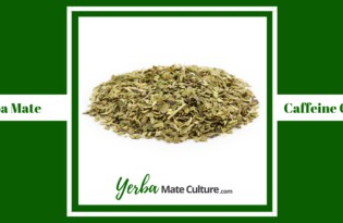Yerba Mate Caffeine Content - All You Need to Know