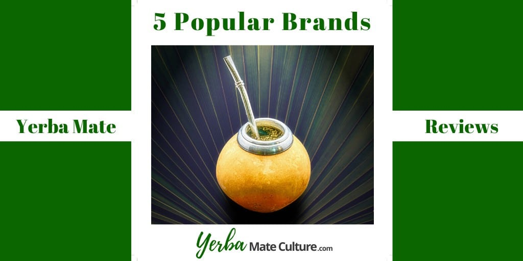 Yerba Mate Tea Reviews - 5 Popular Brands