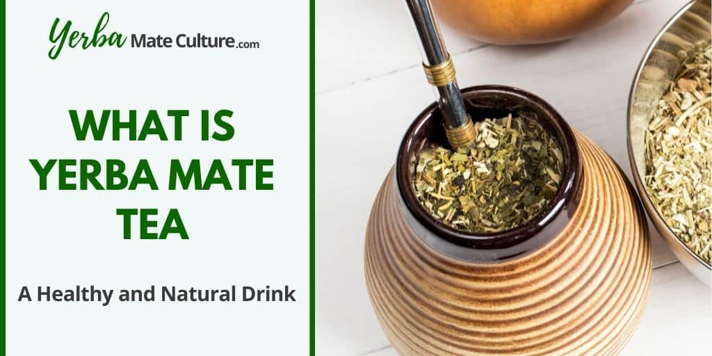 What is Yerba Mate Tea - A Refreshing, Healthy and Natural Drink