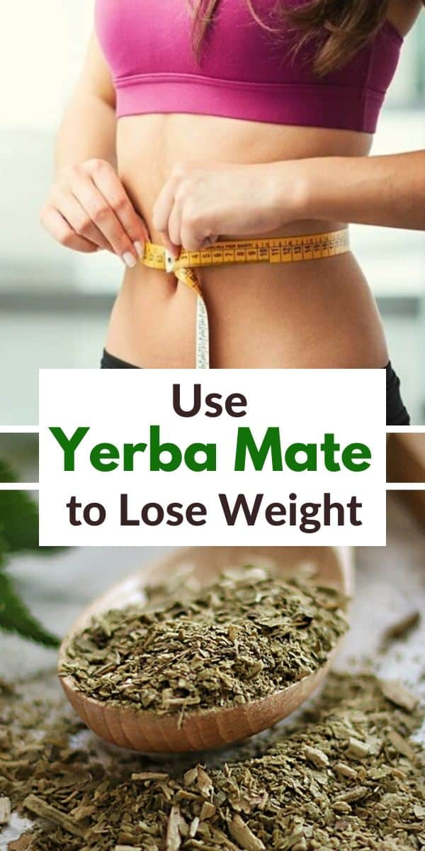 use yerba mate for weight loss