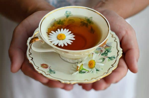 What is the Best Chamomile Tea
