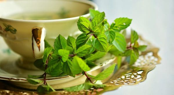 Peppermint Tea Health Benefits – It's Good for You!