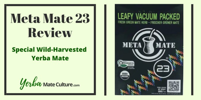 Meta Mate 23 Review - Special Wild-Harvested Yerba Mate