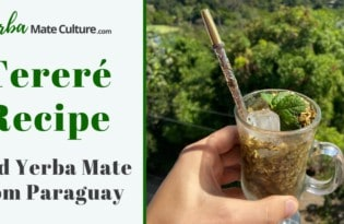 Tereré Recipe - Iced Yerba Mate Drink from Paraguay