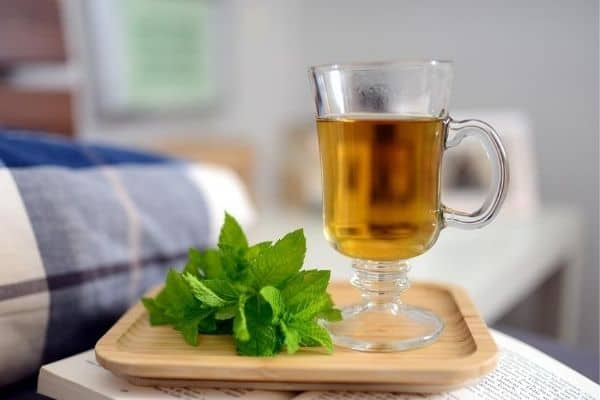 fresh peppermint tea