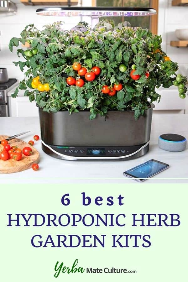 Hydroponic Herb Garden Kits for Indoors