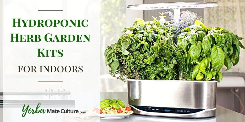 best herb garden kits for indoors