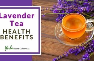 Lavender Tea Benefits, Side Effects, and How to Make It