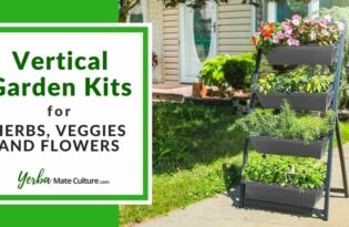 Best Vertical Garden Kits for Herbs, Veggies, and Flowers